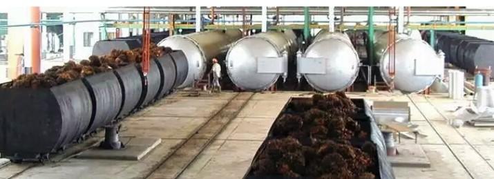 Proses Olahan Pembuatan Minyak Sayur Di Indonesia